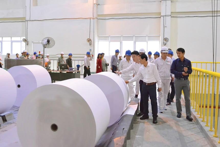 Bảo vệ môi trường, yếu tố sống còn của ngành giấy