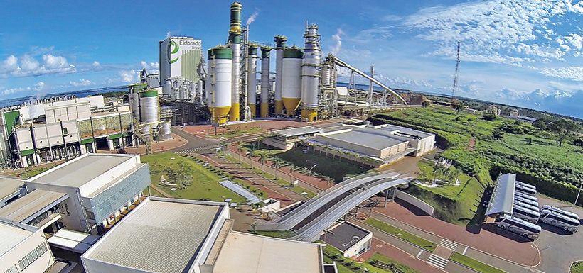 Arauco tăng giá bột giấy không tẩy trắng tại Trung Quốc từ tháng 11